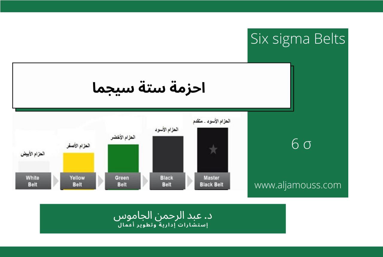أحزمة ستة سيجما Six sigma Belts